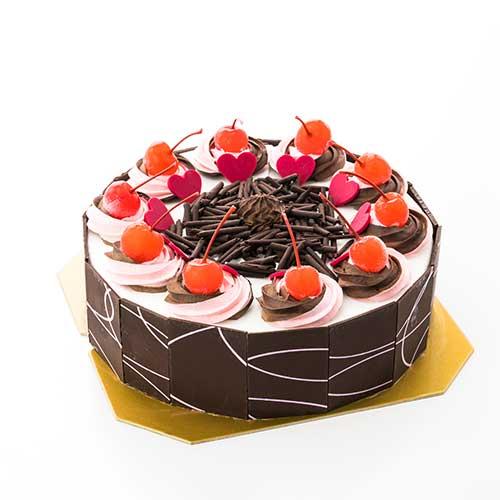 Chocolate Bar Coating Cake